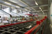 Dam pracę w Niemczech na produkcji sortowanie warzyw bez znajomości języka Stuttgart
