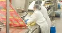 Praca w Niemczech pakowanie sera bez znajomości języka od zaraz Hamburg