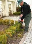 Niemcy praca fizyczna dla ogrodnika bez znajomości języka w Neuss przy pielęgnacji ogródków