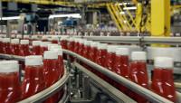 Praca w Niemczech od zaraz na produkcji keczupu bez języka 2016