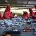 sortowanie-odpadow-smieci-2015 (2)