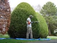 Niemcy praca fizyczna – zakładanie ogrodów, czyszczenie basenów ok. Sindelfingen
