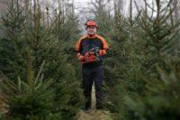 Sezonowa praca Niemcy od zaraz leśnictwo bez znajomości języka Starnberg