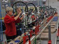 Od zaraz praca w Niemczech produkcja-montaż rowerów bez znajomości języka Bremen