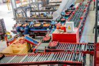 Od zaraz Niemcy praca fizyczna dla par sortowanie warzyw bez języka Dortmund