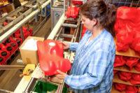 Stuttgart bez znajomości języka praca Niemcy na produkcji zabawek od zaraz