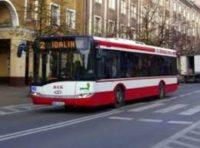 Praca w Niemczech jako kierowca autobusu z kat.D, okolice Drezna