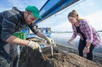 Przy zbiorach truskawek i szparagów bez języka sezonowa praca w Niemczech 2021 Ingolstadt