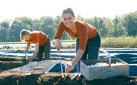 Bez języka sezonowa praca Niemcy przy zbiorach szparagów od zaraz w Bitburgu